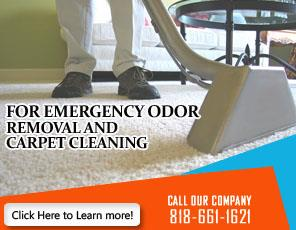 Pet Stain And Odor Removal - Carpet Cleaning Pacoima, CA