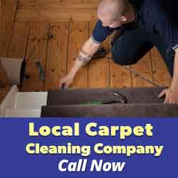 Contact Carpet Cleaning Services